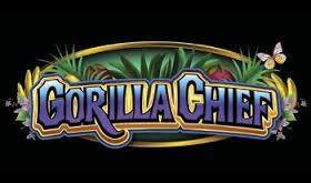 Gorilla-Chief