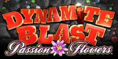 Passion Flower Dynamite Blast