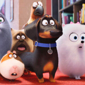 The Secret Life Of Pets: 2017 Movies On The Lawn at Clearwater Casino Resort