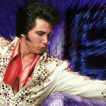 Danny Vernon Illusion Of Elvis